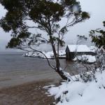 Tasmania : Deloraine-Craddle Mountain National Park-Rosebery