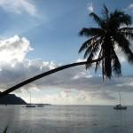 French Polynesia : Moorea