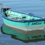 Chile : Chiloé : Ancud – Punihuil