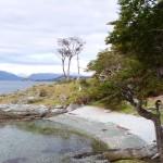 Argentina : Ushuaia : Parque Nacional Tierra Del Fuego